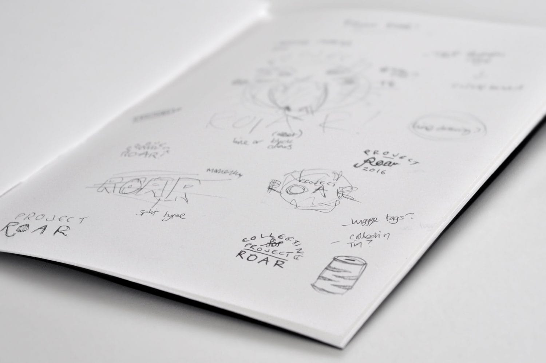 ROAR sketch